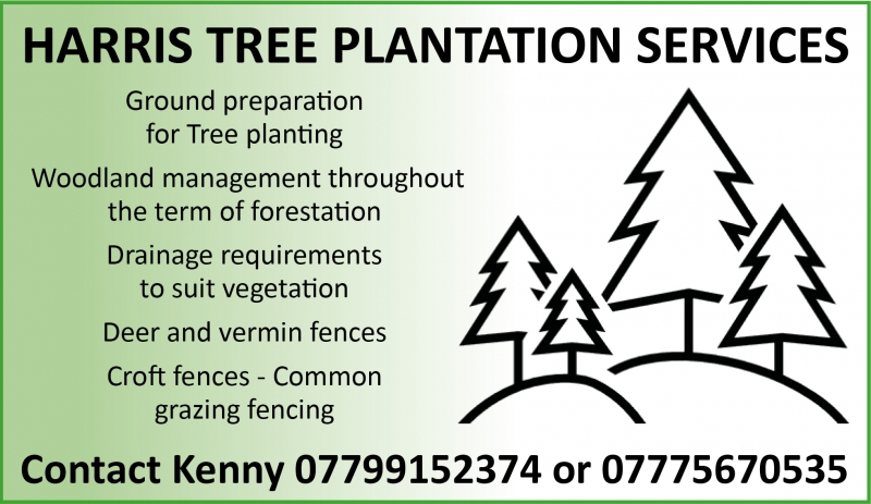 HARRIS TREE PLANTATION SERVICES