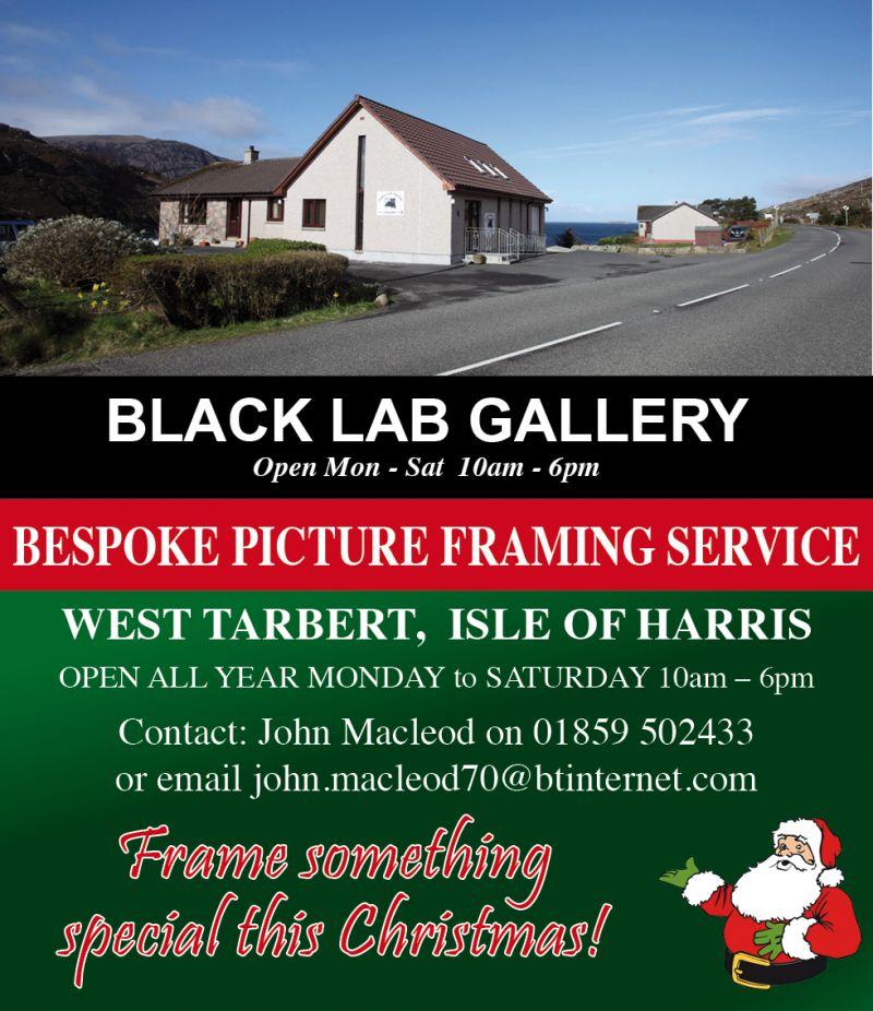 Black lab gallery